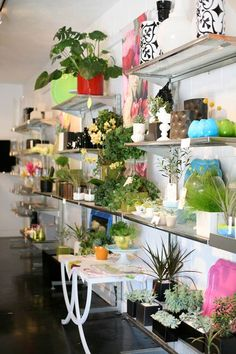 This is pretty typical of what the inside of the flower shop looked like.
