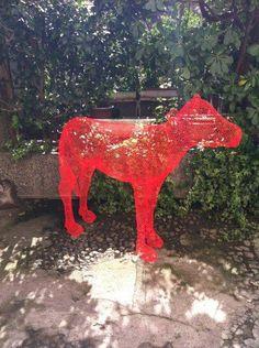 cow at Rossana Orlandi