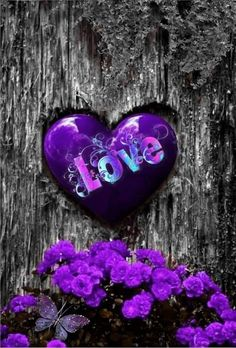 Purple Wallpaper, Butterfly Wallpaper, Heart Wallpaper, Wallpaper Iphone Cute, Love Wallpaper, Cellphone Wallpaper, Love Heart Images, Heart Pictures, Love Pictures