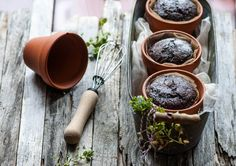 Chocolate Flower Pot Cakes (baked right in the planters)