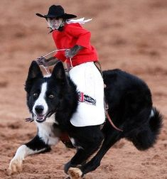 Gonna teach my monkey to barrel race with his dog!