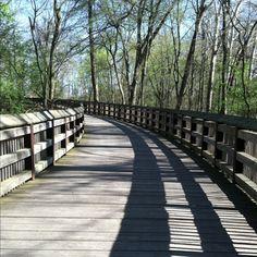 Toledo, Ohio... my life at xc, The wildwood bridge