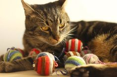 Cat toy with bell felted set of two by elevele on Etsy, €6.82