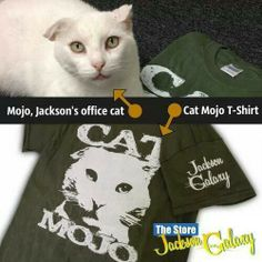 1000 images about cats from hell d on pinterest for Mojo jackson