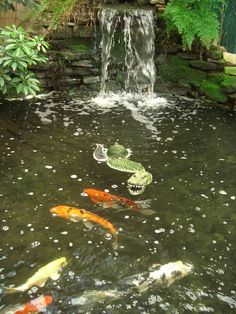 16 Landscape Ideas That Use Water Features Koi Pond With Waterfall A traditional pond stocked with k