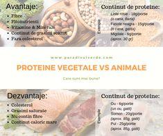 Proteina este o parte esentiala din dieta si ajuta la construirea, repararea si mentinerea structurilor corpului in cea mai buna forma. Toate alimentele care sunt derivate din animale si din plante pot sa ofere proteine insa sunt si unele diferente. Cantaloupe, Fruit, Food, Plant, Essen, Meals, Yemek, Eten