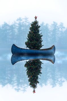 Canoeing around the Christmas tree, have a happy holiday