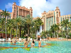 Fall Sale At The Cove & The Reef Atlantis!! --- The Cove, Atlantis Fall Sale includes: • Up to 40% off room rate • Up to $500 Resort Credit • 5 Nights from $1799 per person in a Cove Ocean Suite --- The Reef, Atlantis Fall Sale Includes: • Up to 40% off room rate • Access to 141-acre Atlantis Aquaventure • 3 Nights from $1089 per person in a Studio Ocean View • Book now through 11/30/16 for travel through 12/20/16