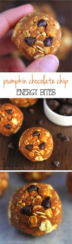 Pumpkin Chocolate Chip Energy Bites -- like a healthy snack version of the cookies! Only 6 ingredients & almost 10 grams of protein! (Baking Tools Projects)