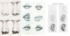 ¿Estás aprendiendo a dibujar? Una de las cosas más complicadas es el dibujo de rostros y hoy vamos a ver las claves para dominarlo. Anatomy Sketches, Art Tutorials, Pencil Drawings, Comics, How To Draw Portraits, 3d Pencil Drawings, Lettering Art, Drawing Classes, Drawing Heads