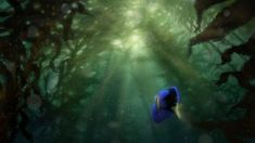 "Lighting exploration from Disney•Pixar's ""Finding Dory""—in theaters Nov. 25, 2015."