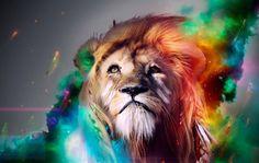 #Inspiration #Motivated #toptags #SuccessQuotes #MotivationalQuotes #Millionaire #Learn #Network #AlwaysLearning #Grind #Dedication #Ambition #Money #Hustle #BuildYourEmpire #Leadership #SelfMade #DreamBig #MillionaireLifestyle #GoodLife #Mindset #KeepGoing #DailyGrind #NeverGiveUp #Entrepreneur #LifeQuotes #StartUpLife #Marketing #Motivation #Business