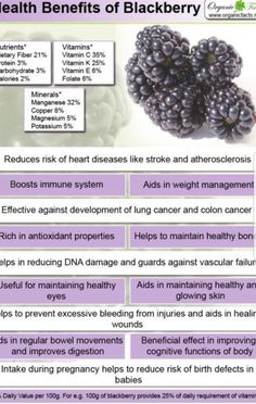 Health benefits of blackberry include better digestive health, strengthened immune defense, healthy Natural Remedies For Congestion, Natural Remedies For Anxiety, Natural Health Remedies, Natural Cures, Natural Healing, Healing Herbs, Natural Skin, Food During Pregnancy, Holistic Remedies