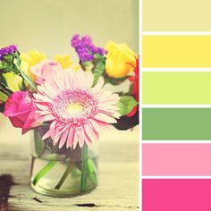 Spring Color Palates, fresh flowers