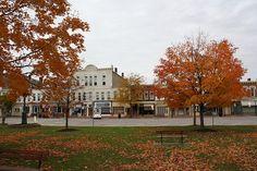Chardon, Ohio with maple trees