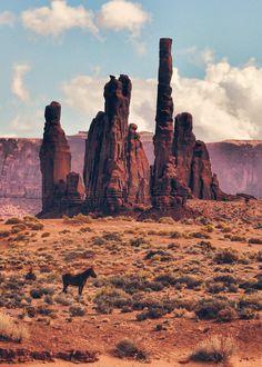 mstrkrftz:    Lone Horse in Monument Valley | Jeff Clow  #poler #polerstuff #campvibes