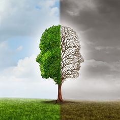 Image result for bipolar tree