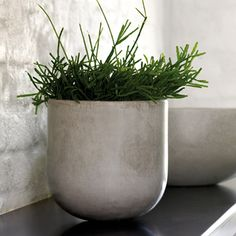High Quality Ceramic Planter   Product Of Thang Loi. LIFESTYLE VIETNAM · Garden  Accessories