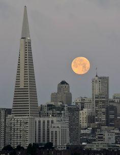 Transamerica pyramid. San Francisco