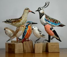 Collection of feathered friends made of paper by Suzanne Breakwell