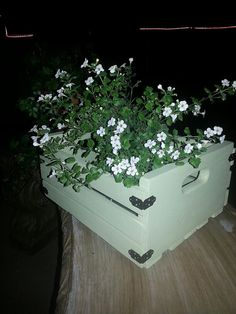 Hey, I found this really awesome Etsy listing at https://www.etsy.com/listing/225976350/adorable-hand-crafted-wood-crate-with