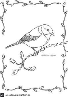 Talitiainen Sketch Painting, Nature Crafts, Nature Animals, Drawing Techniques, Adult Coloring Pages, Science And Nature, Art Lessons, Drawings, Pictures