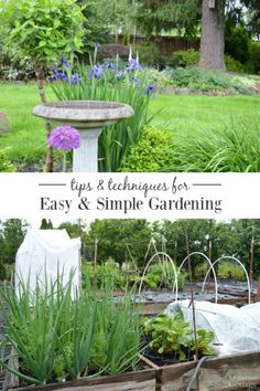 Get simple tips and techniques for your easiest garden ever!