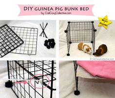 Cali Cavy Collective: a blog about all things guinea pig: How to Build a C&C Guinea Pig Bunk Bed
