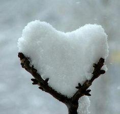 Pureza y fortaleza... necesarias para sostener tu corazón.