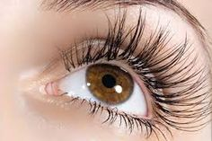 Eyebrows and Eyelashes Decrease - A step to health - Eye Makeup tips Long Thick Eyelashes, How To Grow Eyelashes, Longer Eyelashes, Perfect Eyelashes, Thick Eyebrows, Beauty Secrets, Beauty Hacks, Makeup Tips, Beauty Makeup
