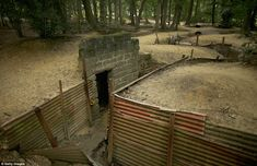 Preserved: A network of trenches in Sanctuary Wood, part of the battlefield at Ypres in Belgium, has been kept in the same state as it would have been during the war