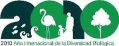Año internacional de la Diversidad Biologica