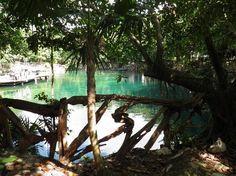 3,554 traveler photos of Sandos Caracol Eco Resort & Spa