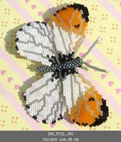 Aurorafalter (Brickstitch und Peyote) - Insekten, Krabbeltier, Reptilien, Amphibien - Perlentiere-Forum