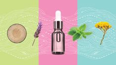 18 Essential Oils for Sore Muscles: Pain Relief, Tension, and Swelling Relaxing Oils, Calming Oils, Calming Essential Oils, Essential Oils For Colds, Young Living Essential Oils, Essential Oil Blends, Copaiba Oil Benefits, Rosewood Essential Oil, Helichrysum Essential Oil