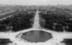 #monochrome #blackwhite #blackandwhitephotography #paris #france #garden #alleecentrale