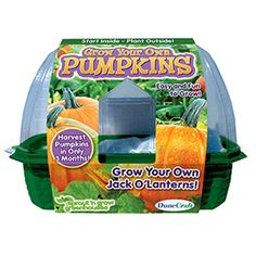 Pick up this kit and Grow Your Own Pumpkins with ease
