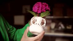 Shapeways 3D Printing & the Culture of Creativity