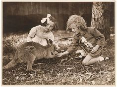 Kangaroo & girls, ca. 1925-ca. 1945 / by Sam Hood by State Library of New South Wales collection