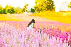colorful nature♥