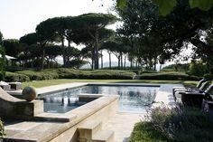 pool & trees