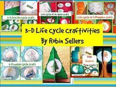 3-D life cycle craftivities by Robin Sellers