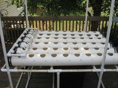 How to Start Hydroponic Gardening As A Beginner- Hydroponic Gardening Hydroponic Gardening for Beginners Growing Without Soil How to Garden Without Soil Hydroponic Gardens DIY Hydroponic Garden Gardening Gardening Projects Aquaponics System, Hydroponic Farming, Hydroponic Growing, Growing Plants, Aquaponics Diy, Aquaponics Greenhouse, Big Plants, Indoor Vegetable Gardening, Organic Gardening