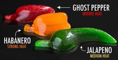 Gummy Peppers Made In the Shape of Jalapeño, Habanero and Ghost Peppers and Infused with Corresponding Spices