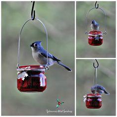 Rebecca's Bird Gardens Blog: Merry Christmas! Suet feeders from jelly jars!