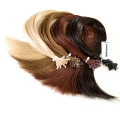 HAIRDREAMS, The art of hair extensions.