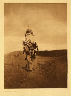 """Scout – Atsina, 1908. Caption: """"The scouts of the Atsina, carried a wolf-skin which they used in waving signals to their chief. That which is apparently hair-ornamentation, standing high above the head of the subject, is in reality coarse stalks of grass, indicating that the wearer is a scout. The origin of the custom was in the practice of scouts to wear on their head thick masses of grass, which enabled them to peer over hilltops without being discovered by the enemy."""""""