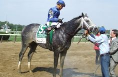 Frosted - fastest winner in the history of the G1 Met Mile