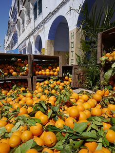t-a-h-i-t-i:    Chefchaouen market, Morocco with Panasonic GX1 and Lumix 7-14mm lens by Cameralabs on Flickr.
