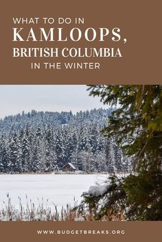 Things to do in Kamloops, British Columbia in the winter. If you are on road trip through British Columbia or Canada, this is the perfect place to stop for a night or two. Whats Open, Trans Canada Highway, Winter Hiking, Winter Travel, Centennial Park, Snow Covered Trees, Tourism Website, Canada Travel, Rocky Mountains